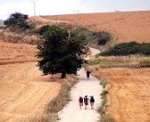 Camino de Santiago – Put Svetog Jakova